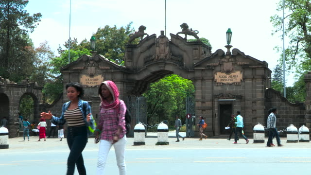 ethiopia- addis ababa university - アジスアベバ点の映像素材/bロール
