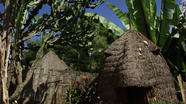 ethiopia- dorze tribe traditional house - grass hut stock videos & royalty-free footage
