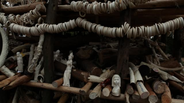ethiopia has torched a sixtonne pile of seized elephant ivory the country's entire stock vowing a zero tolerance policy towards poachers and... - trafficking stock videos and b-roll footage