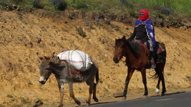 Ethiopia- riding to the market 1