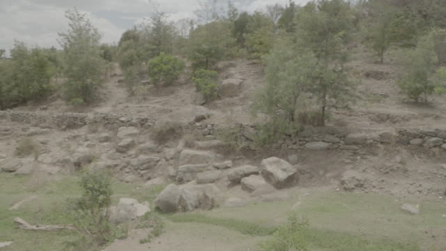 ethiopian landscape - scrubs stock videos & royalty-free footage