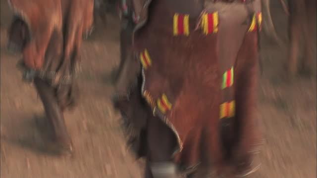 ethiopian women dance next to bulls. - minoranza video stock e b–roll