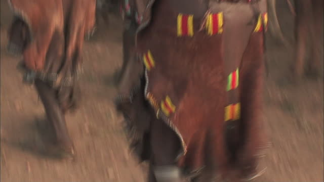 ethiopian women dance next to bulls. - bull animal stock videos & royalty-free footage