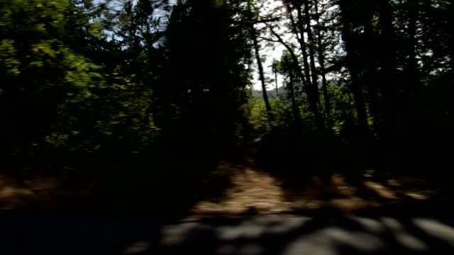 eugene suburb xxx synced series left view driving process plate - eugene oregon stock videos & royalty-free footage