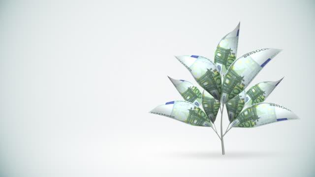 vidéos et rushes de arbre de développement euro-alpha matte inclus, hd - finances personnelles