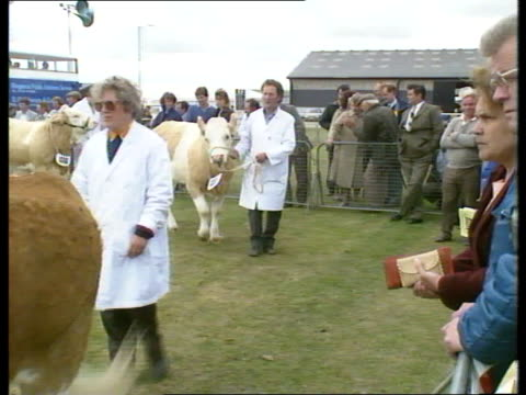 cornwall also available 845pm as 1pm - itv weekend evening news stock-videos und b-roll-filmmaterial
