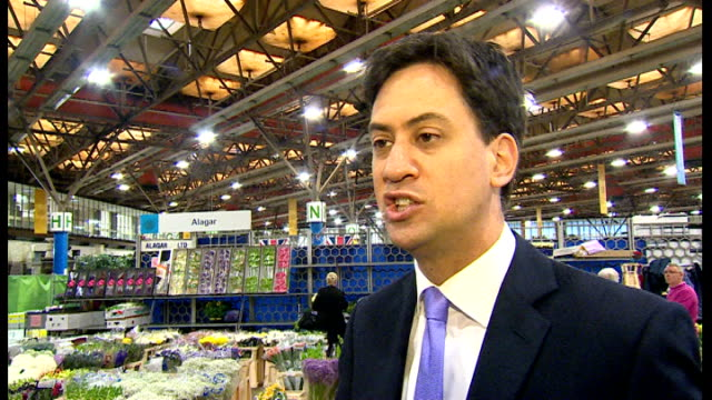 ed miliband at new covent garden market ed miliband mp interview sot red roses tilt up miliband chatting to press / miliband buying flowers for his... - ed miliband stock-videos und b-roll-filmmaterial