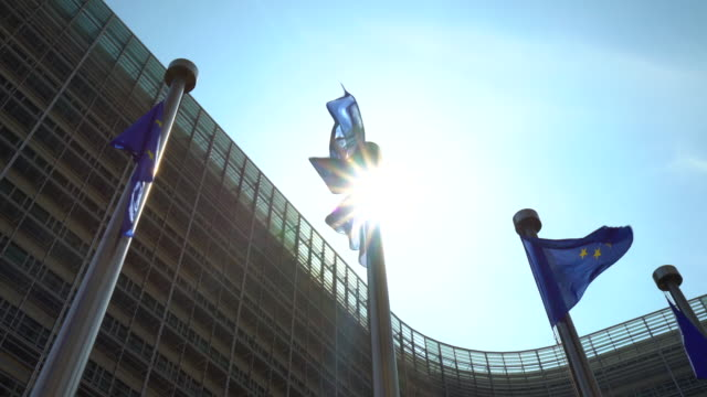 european parliament with european flags in brussels - brussels capital region stock videos & royalty-free footage