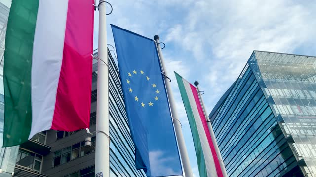 european union an hungary flags with business skyscraper and government power backdrop - hungarian culture stock videos & royalty-free footage