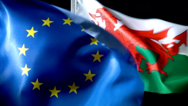european union flag and welsh flag - referendum stock videos & royalty-free footage