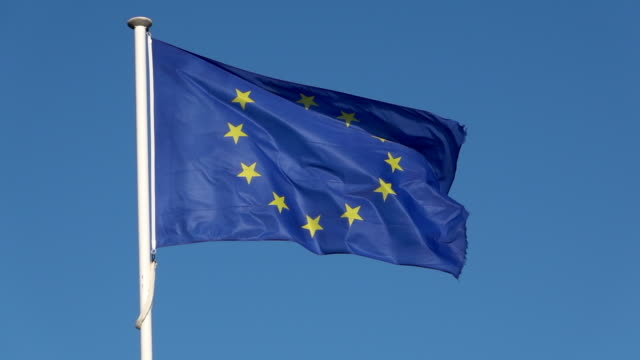 european union flag in wind - 1955 stock videos & royalty-free footage