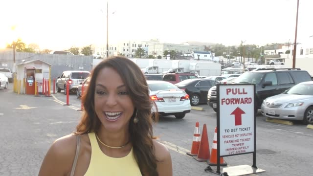 interview eva larue discusses her role on csi as she arrives at california fire foundation's 5th annual gala at avalon in hollywood in celebrity... - eva larue stock videos and b-roll footage