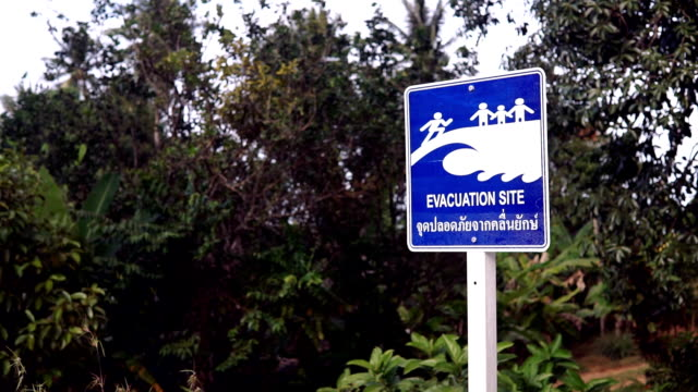 evacuation site tsunami earthquake disaster warning sign - 2004 indian ocean earthquake and tsunami stock videos & royalty-free footage