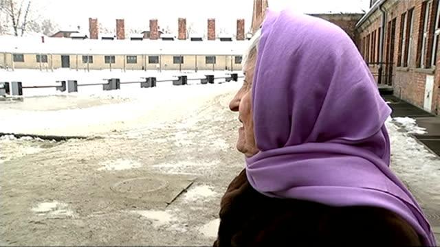stories of holocaust survivors poland auschwitz rose schindler interview sot - sopravvivenza video stock e b–roll