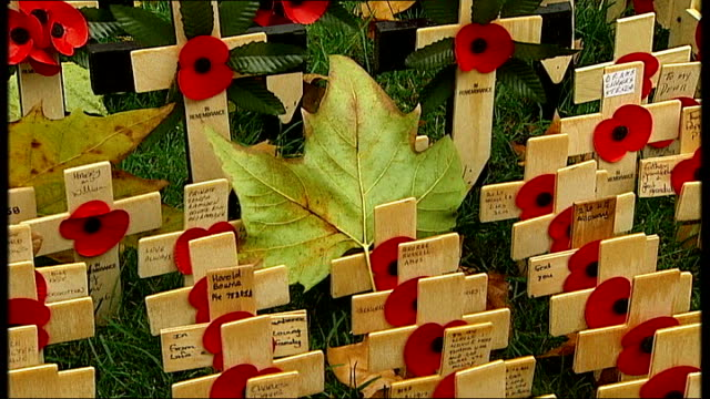 eve of remembrance sunday war dead remembered around the world t08110810 / tx london westminster ext poppies on crosses placed in field of... - ジャッキー ロング点の映像素材/bロール