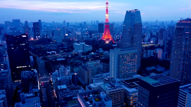 evening aerial view of tokyo - wide shot点の映像素材/bロール
