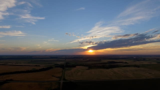 stockvideo's en b-roll-footage met evening corn field - horizon