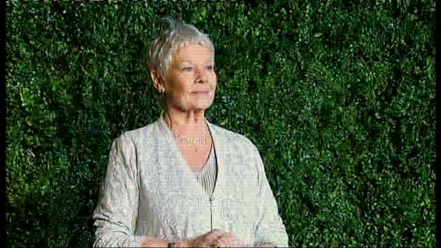 evening standard theatre awards; england: london: savoy hotel: ext / night dame judi dench arriving for evening standard theatre awards and posing... - ジュディ・デンチ点の映像素材/bロール