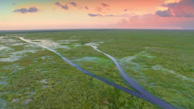 aerial everglades at sunset - horizon over land stock videos & royalty-free footage