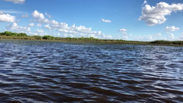 everglades by boat - everglades national park stock videos & royalty-free footage