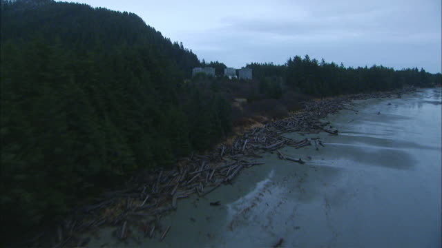 aerial evergreen forest surrounding oceanside solar plant facility / alaska, united states - water's edge stock videos & royalty-free footage