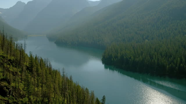 Evergreen trees surround a glacial lake in Glacier National Park.