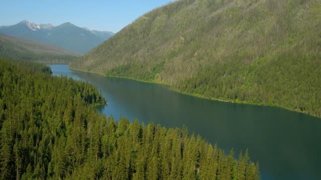 evergreen trees surround a lake in glacier national park. - アメリカグレイシャー国立公園点の映像素材/bロール