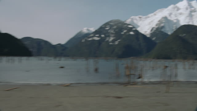 aerial evergreen-covered hillsides and mountains sprinkled with snow surrounding calm bay waters with woody plants rising up on the shore / vancouver, british columbia, canada - baumstumpf stock-videos und b-roll-filmmaterial