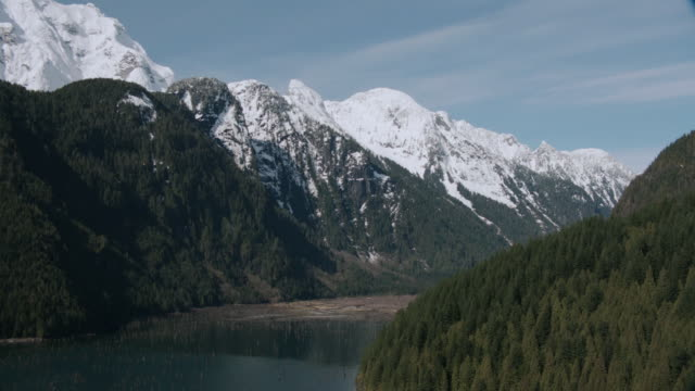 aerial evergreen-covered hillsides and mountains sprinkled with snow surrounding calm bay waters / vancouver, british columbia, canada - baumstumpf stock-videos und b-roll-filmmaterial