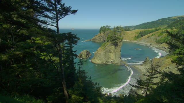 evergreens frame a rugged coast in oregon. - oregon coast stock videos & royalty-free footage