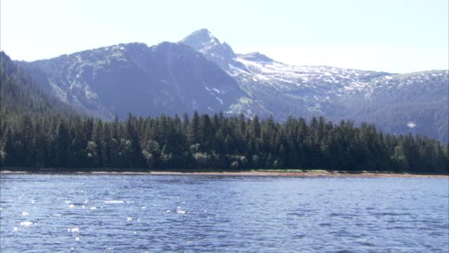 evergreens line alaska's mountainous coast. - アラスカ点の映像素材/bロール