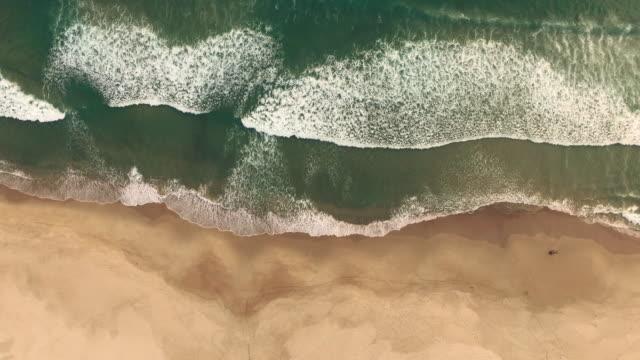 すべての波は次のように美しい - 波打ち際点の映像素材/bロール