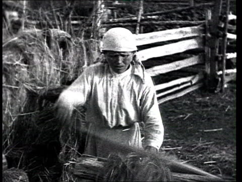 everyday life of peasants in traditional prerevolutionary imperial russian countryside woman threshing wheat - threshing stock videos & royalty-free footage