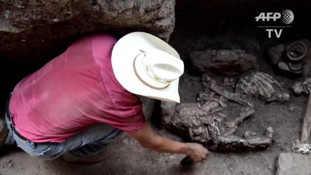 excavando dos fosas en la cima de una pequena colina en el parque arqueologico copan al noreste de honduras arqueologos japoneses descubrieron seis... - arqueologia stock videos & royalty-free footage