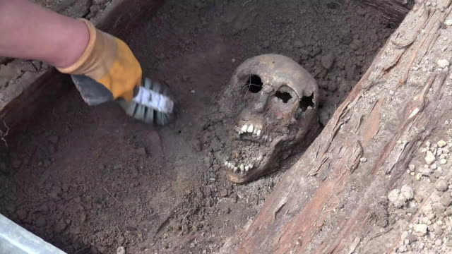 excavating a skull in a grave - ancient stock videos & royalty-free footage