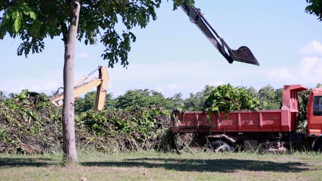 excavators - dump truck stock videos and b-roll footage