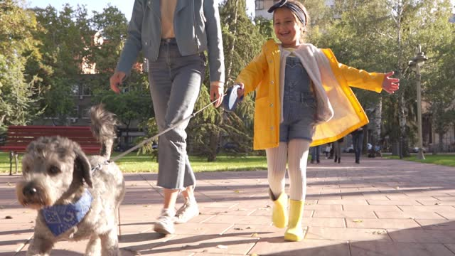 excited little girl walking her adorable dog on a pet leash while her older sister makes her company - dog walking stock videos & royalty-free footage