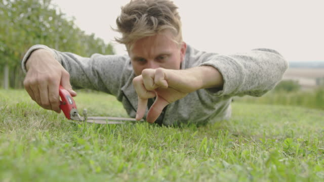 ms exciting man cutting grass with shears - giardinaggio video stock e b–roll