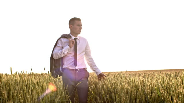 SLO MO Executive walking through field of wheat
