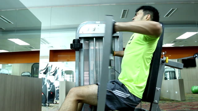 exercise in the gym series - pectoral muscle stock videos and b-roll footage