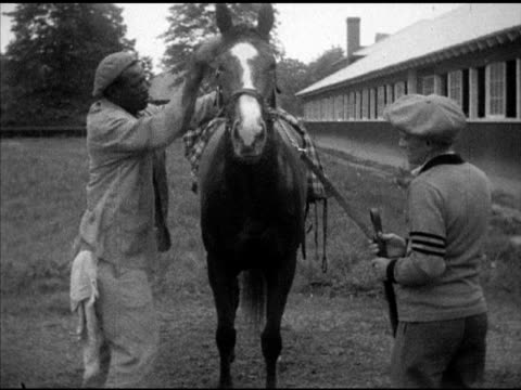 exercise rider holding thoroughbred racehorse reins for african-america male groomer, rubbing horse down, rub down. unidentified thoroughbred horse... - zaum stock-videos und b-roll-filmmaterial