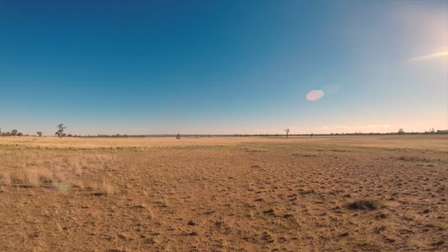 expanse of dry pasture and horizon - dry stock videos & royalty-free footage
