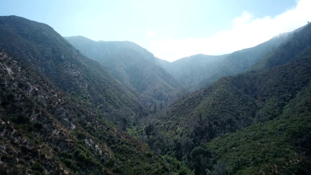 Expansive Green Mountain Valley in California Wildneress