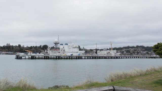 vídeos de stock e filmes b-roll de expansive view of cruise ships at dock - rio willamete