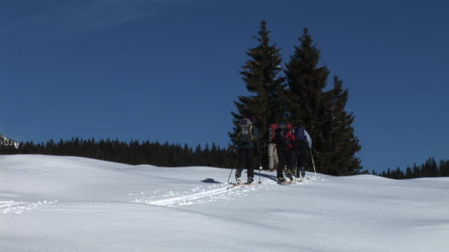 hd: expedition on snow - telemark stock videos and b-roll footage