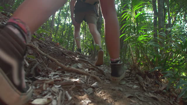 experience of excitement to traveling hikers couple age 25-29 yearold of latin american and hispanic ethnicity with amazing feeling while backpacks enjoying travel holidays active healthy lifestyle adventure journey vacations at jungle.travel concept. - wonderlust stock videos & royalty-free footage