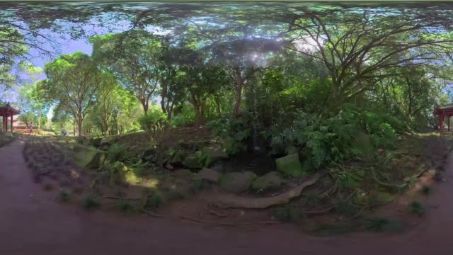 experiencing hawaii's nature - 360 video stock videos & royalty-free footage
