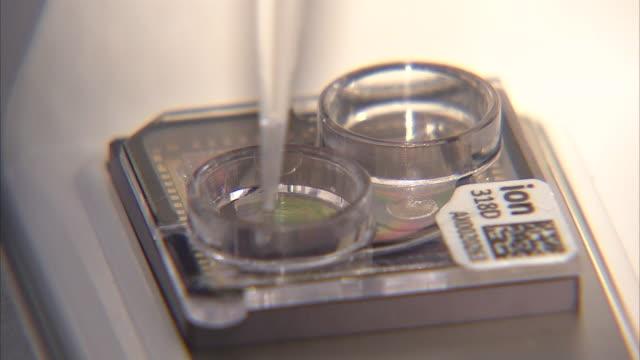 vídeos de stock e filmes b-roll de dna experimentation - investigação médica