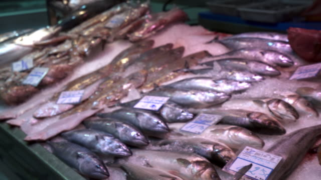 explore fish market place in santa cruz tenerife spain 4k video - mediterranean culture stock videos & royalty-free footage