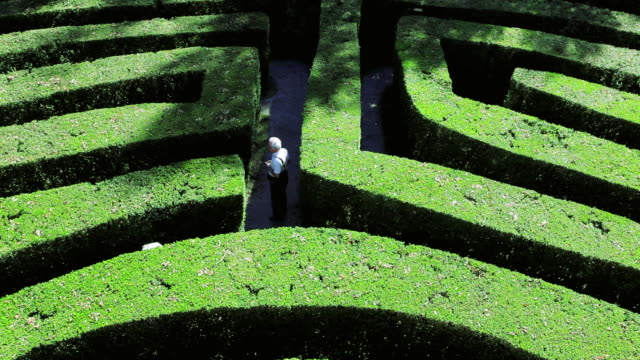 ha explorers walking through maze of hedges / veneto, italy - maze stock videos & royalty-free footage